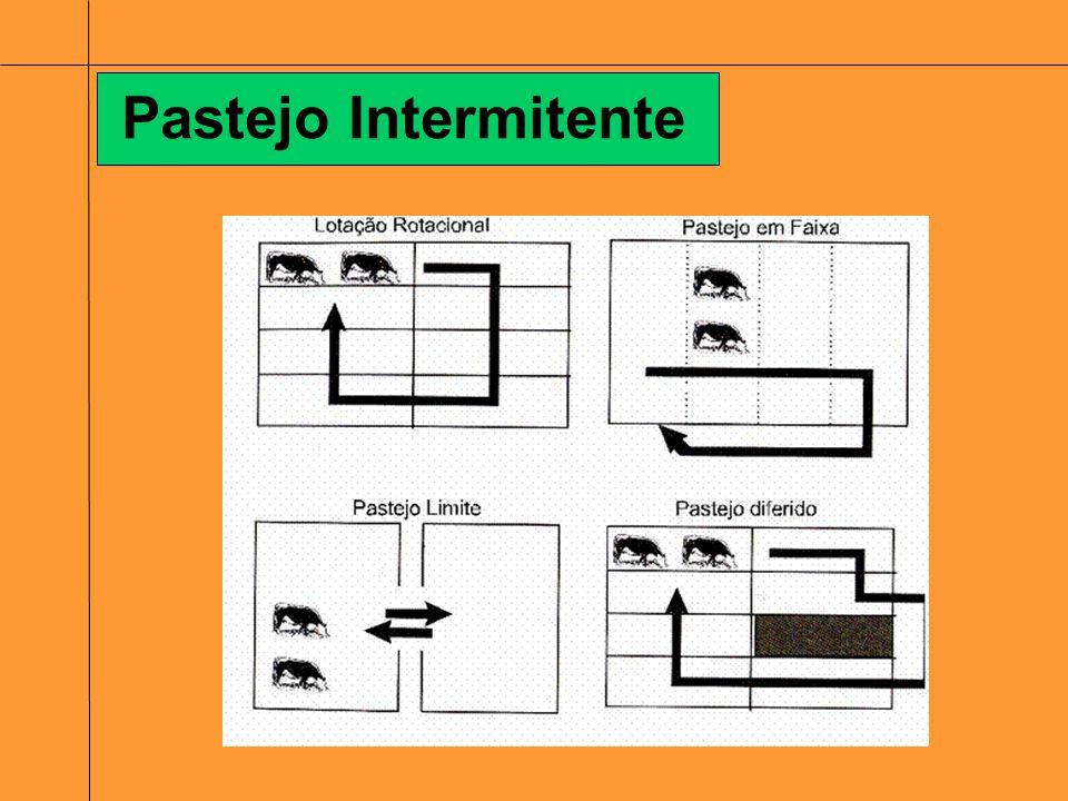 Pasto: Conjunto de perfilhos que vivem de forma dinâmica dentro de uma mesma área; Estruturas: Inflorescência; Folha; Colmo ou caule; Raiz.