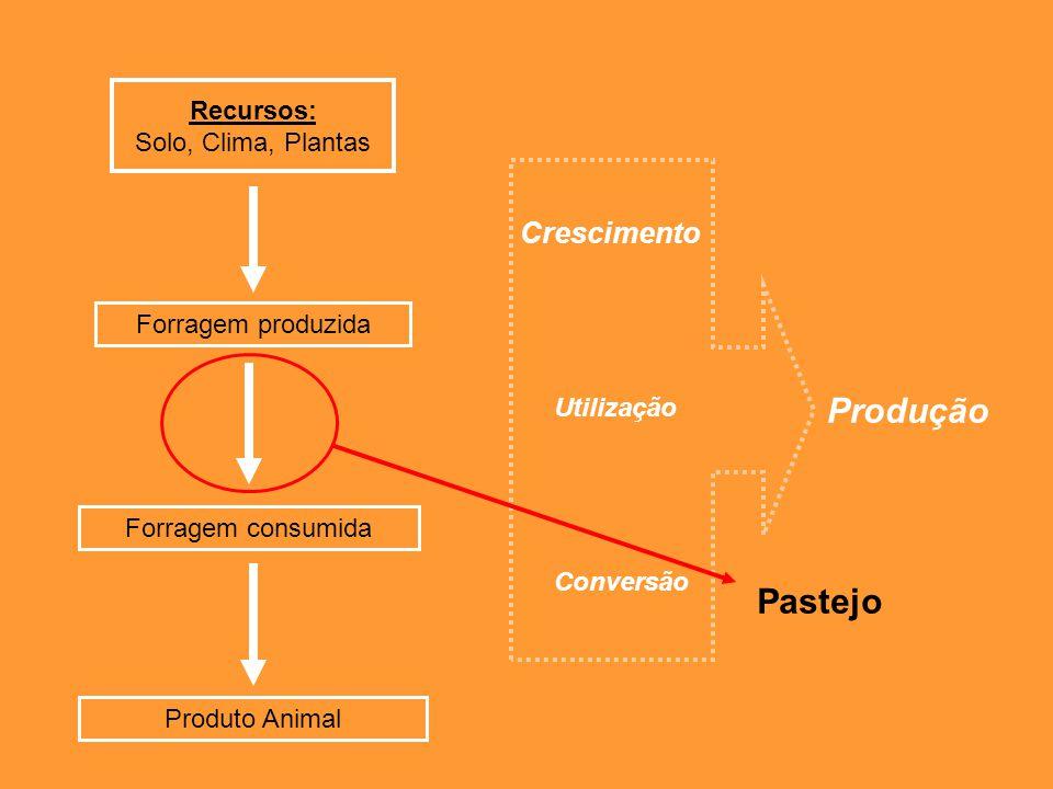 Deve-se fazer um planejamento da área que a planta forrageira está instalada e assim fazer o controle da carga animal, para que a pastagem não seja prejudicada Busca por recursos racionais, para que haja alta produtividade com baixo custo, utilizando dados científicos Bom Manejo = Produtividade
