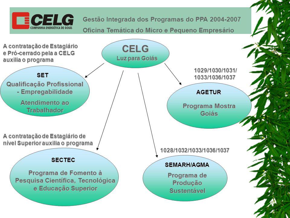Gestão Integrada dos Programas do PPA 2004-2007 Oficina Temática do Micro e Pequeno Empresário SET Qualificação Profissional - Empregabilidade A contratação de Estagiário e Pró-cerrado pela a CELG auxilia o programa SECTEC Programa de Fomento à Pesquisa Científica, Tecnológica e Educação Superior SEMARH/AGMA Programa de Produção Sustentável 1028/1032/1033/1036/1037 AGETUR Programa Mostra Goiás 1029/1030/1031/ 1033/1036/1037 A contratação de Estagiário de nível Superior auxilia o programa Atendimento ao Trabalhador CELG Luz para Goiás