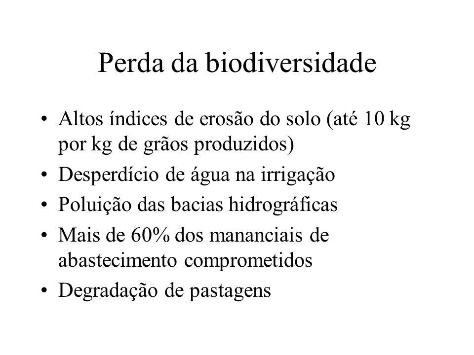 Perda da biodiversidade Altos índices de erosão do solo (até 10 kg por kg de grãos produzidos) Desperdício de água na irrigação Poluição das bacias hidrográficas Mais de 60% dos mananciais de abastecimento comprometidos Degradação de pastagens