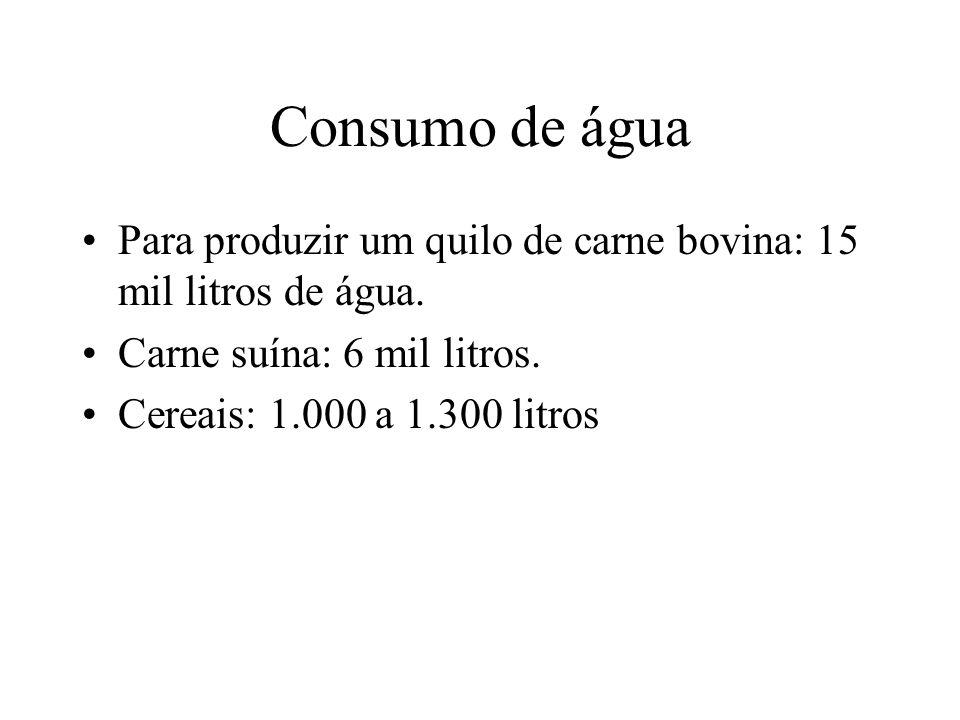 Consumo de água Para produzir um quilo de carne bovina: 15 mil litros de água.
