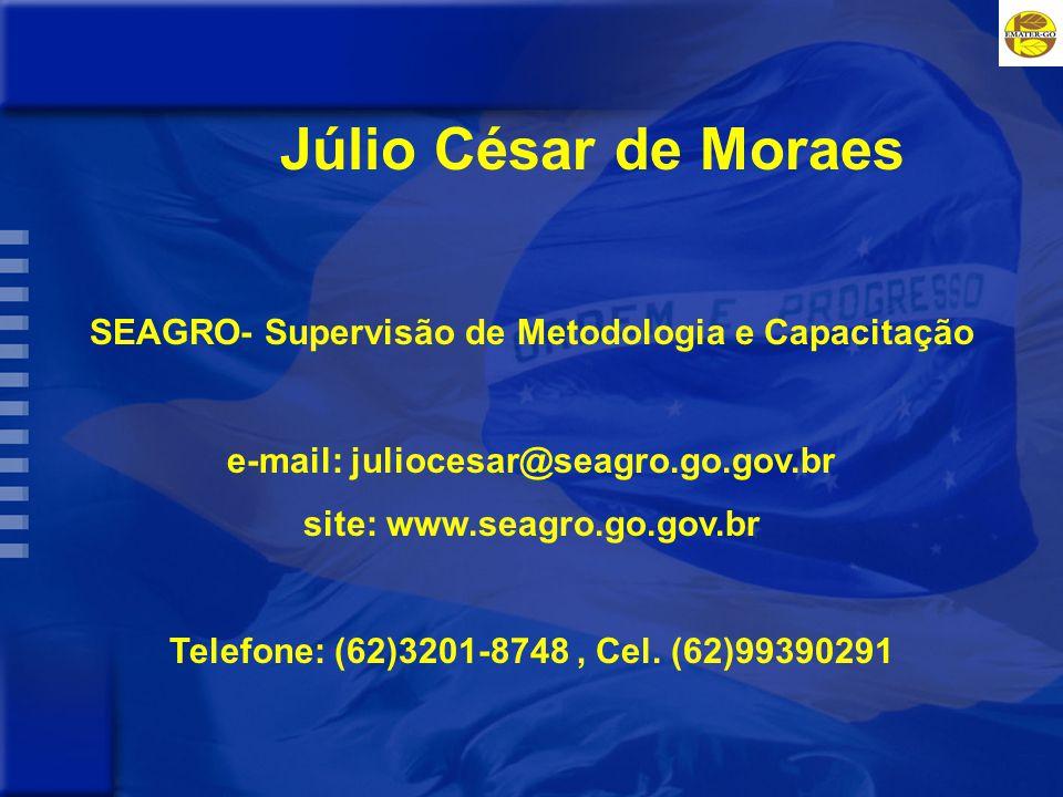 Júlio César de Moraes SEAGRO- Supervisão de Metodologia e Capacitação e-mail: juliocesar@seagro.go.gov.br site: www.seagro.go.gov.br Telefone: (62)3201-8748, Cel.