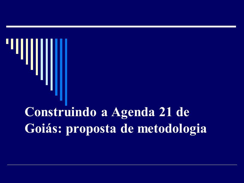 Construindo a Agenda 21 de Goiás: proposta de metodologia
