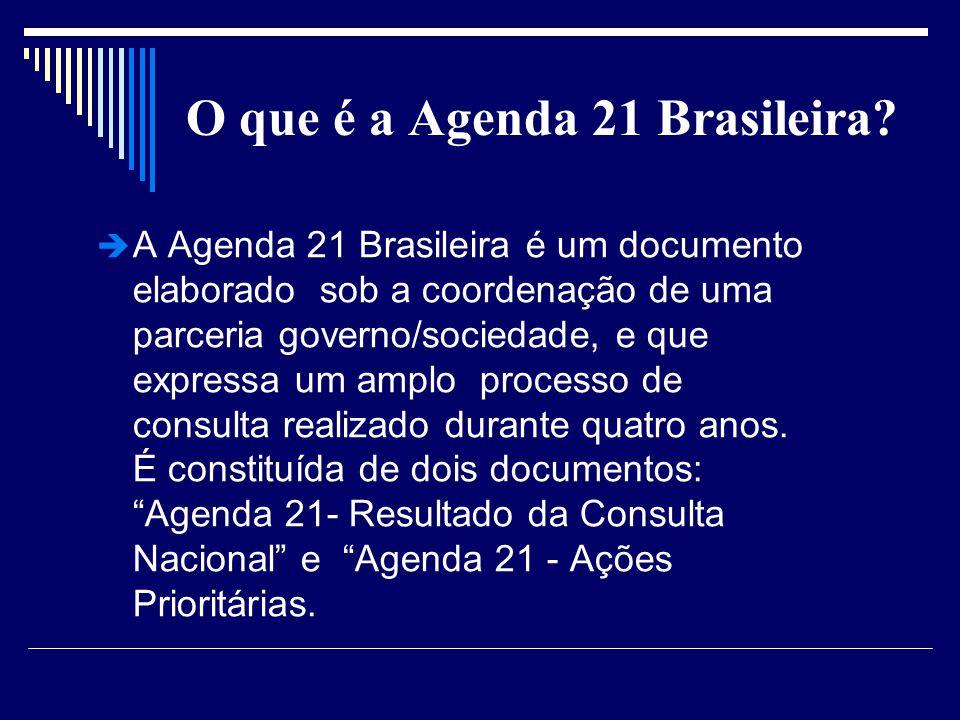 O que é a Agenda 21 Brasileira? A Agenda 21 Brasileira é um documento elaborado sob a coordenação de uma parceria governo/sociedade, e que expressa um