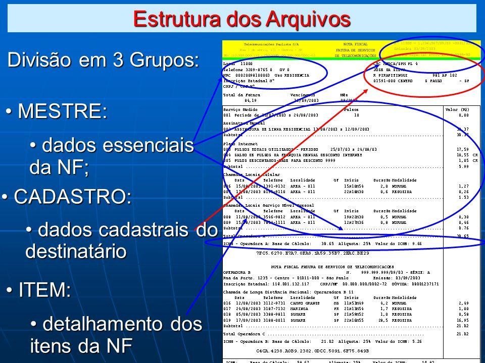 Divisão em 3 Grupos: MESTRE: MESTRE: dados essenciais da NF; dados essenciais da NF; ITEM: ITEM: detalhamento dos itens da NF detalhamento dos itens da NF CADASTRO: CADASTRO: dados cadastrais do destinatário dados cadastrais do destinatário Estrutura dos Arquivos