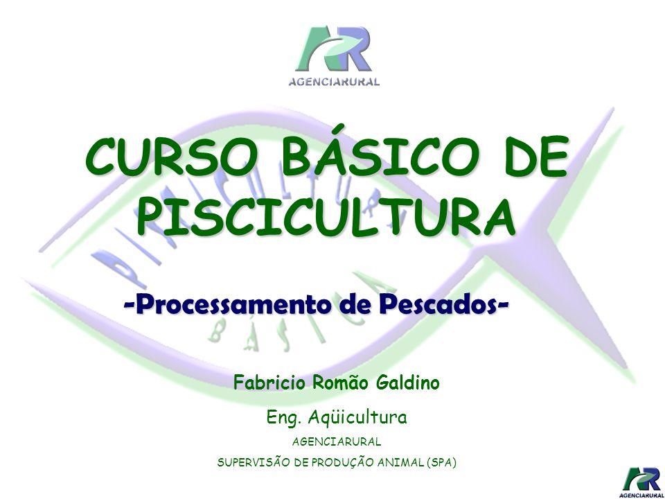 Fabricio Romão Galdino Eng. Aqüicultura AGENCIARURAL SUPERVISÃO DE PRODUÇÃO ANIMAL (SPA) CURSO BÁSICO DE PISCICULTURA -Processamento de Pescados-