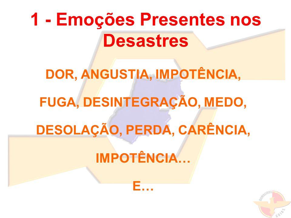 1 - Emoções Presentes nos Desastres DOR, ANGUSTIA, IMPOTÊNCIA, FUGA, DESINTEGRAÇÃO, MEDO, DESOLAÇÃO, PERDA, CARÊNCIA, IMPOTÊNCIA… E…