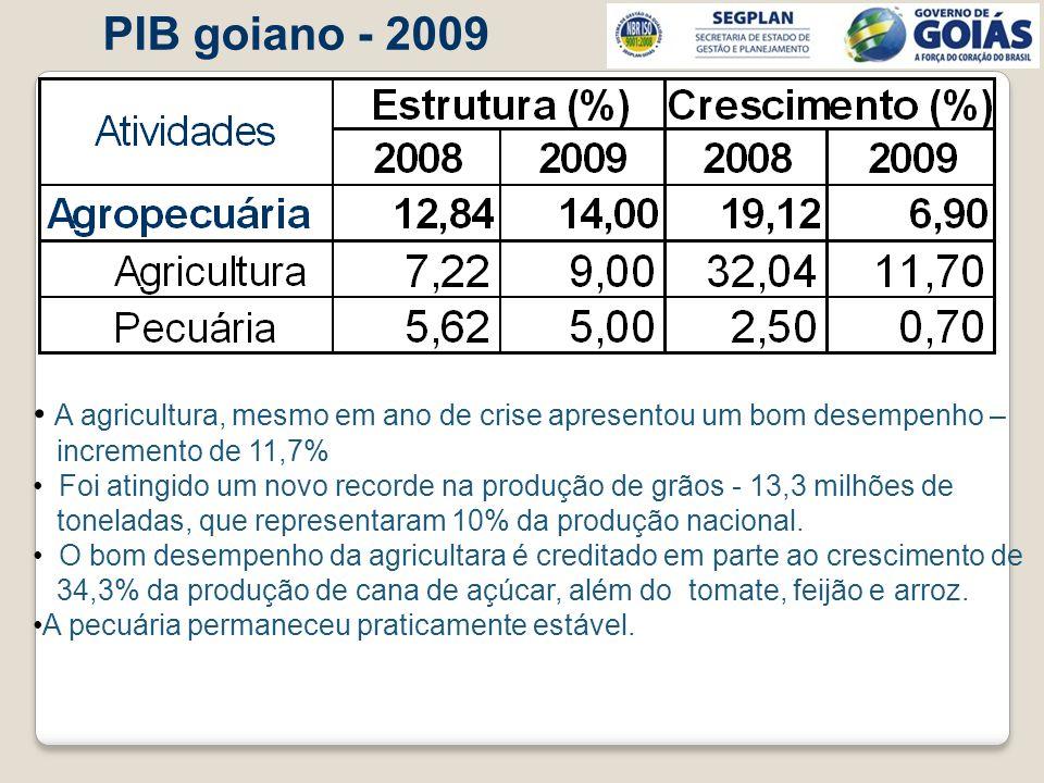 PIB goiano - 2009 A agricultura, mesmo em ano de crise apresentou um bom desempenho – incremento de 11,7% Foi atingido um novo recorde na produção de
