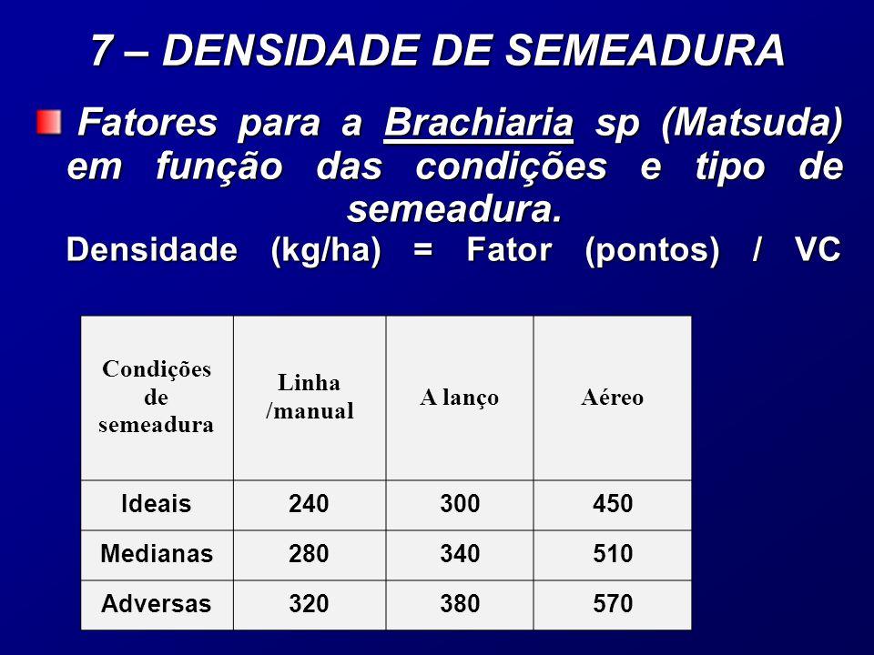 Fatores para a Brachiaria sp (Matsuda) em função das condições e tipo de semeadura.