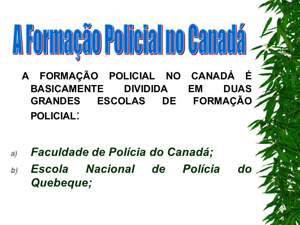 e) A resolução de problemas locais de Segurança Pública A colaboração da população na identificação dos problemas de segurança pública, análise de sua