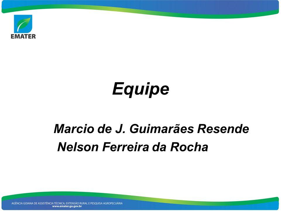 Equipe Marcio de J. Guimarães Resende Nelson Ferreira da Rocha