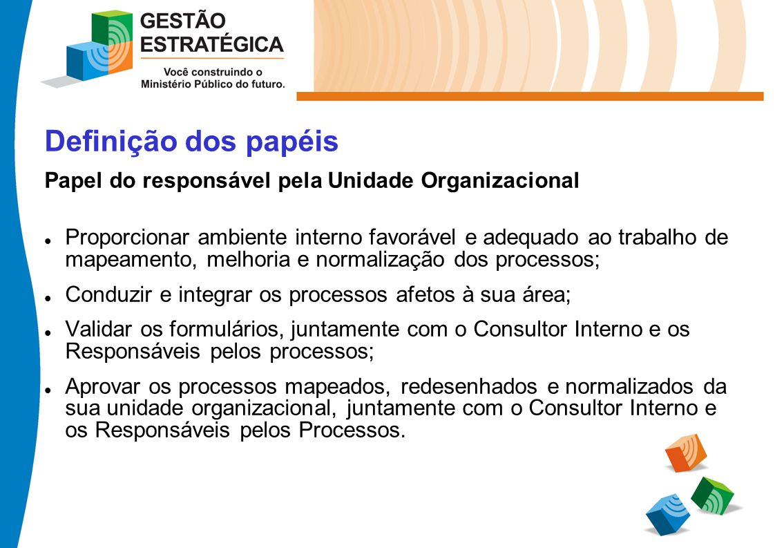 Definição dos papéis Papel do responsável pela Unidade Organizacional Proporcionar ambiente interno favorável e adequado ao trabalho de mapeamento, me