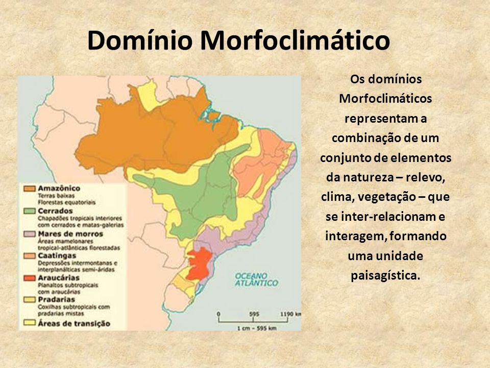 Domínio Morfoclimático Os domínios Morfoclimáticos representam a combinação de um conjunto de elementos da natureza – relevo, clima, vegetação – que s