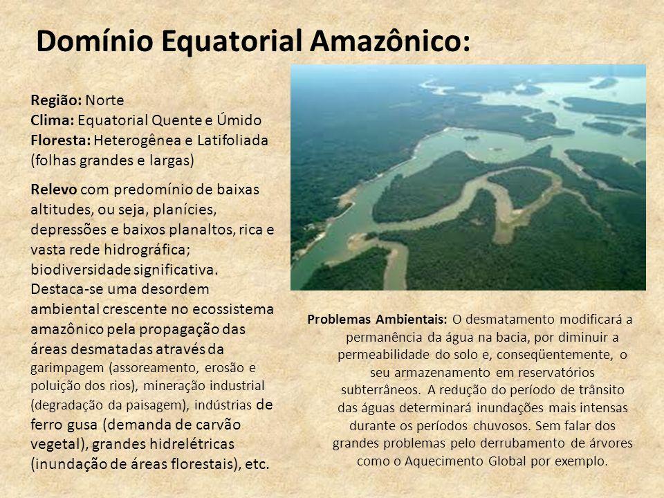Domínio Equatorial Amazônico: Problemas Ambientais: O desmatamento modificará a permanência da água na bacia, por diminuir a permeabilidade do solo e,