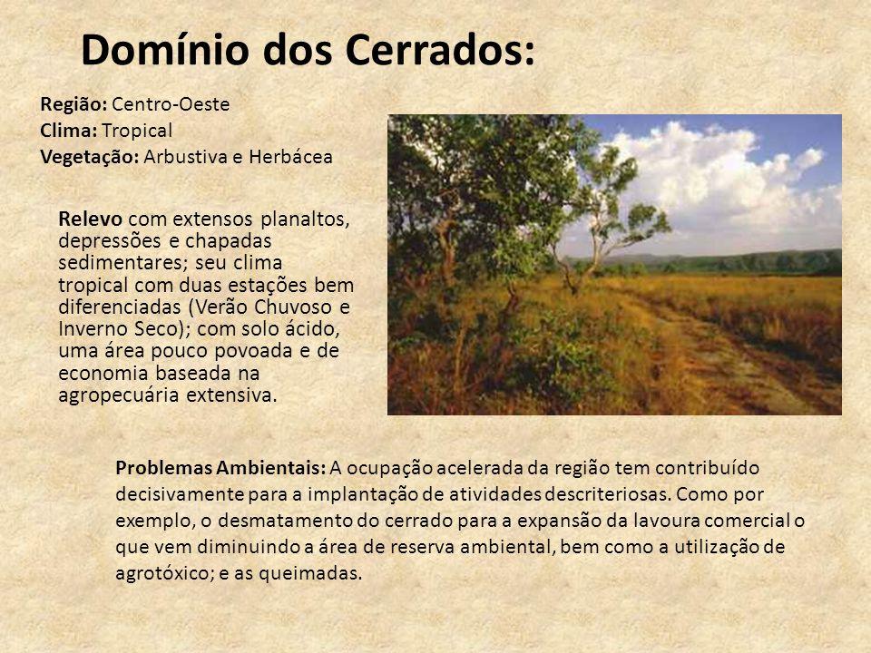 Domínio dos Cerrados: Relevo com extensos planaltos, depressões e chapadas sedimentares; seu clima tropical com duas estações bem diferenciadas (Verão