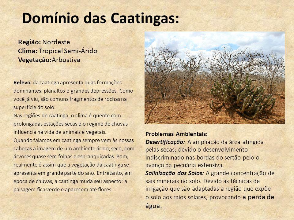 Domínio das Caatingas: Relevo: da caatinga apresenta duas formações dominantes: planaltos e grandes depressões. Como você já viu, são comuns fragmento
