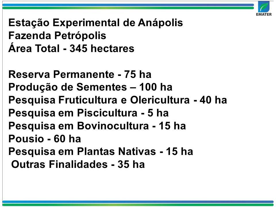Fazenda Petrópolis Área Total - 345 hectares Reserva Permanente - 75 ha Produção de Sementes – 100 ha Pesquisa Fruticultura e Olericultura - 40 ha Pesquisa em Piscicultura - 5 ha Pesquisa em Bovinocultura - 15 ha Pousio - 60 ha Pesquisa em Plantas Nativas - 15 ha Outras Finalidades - 35 ha