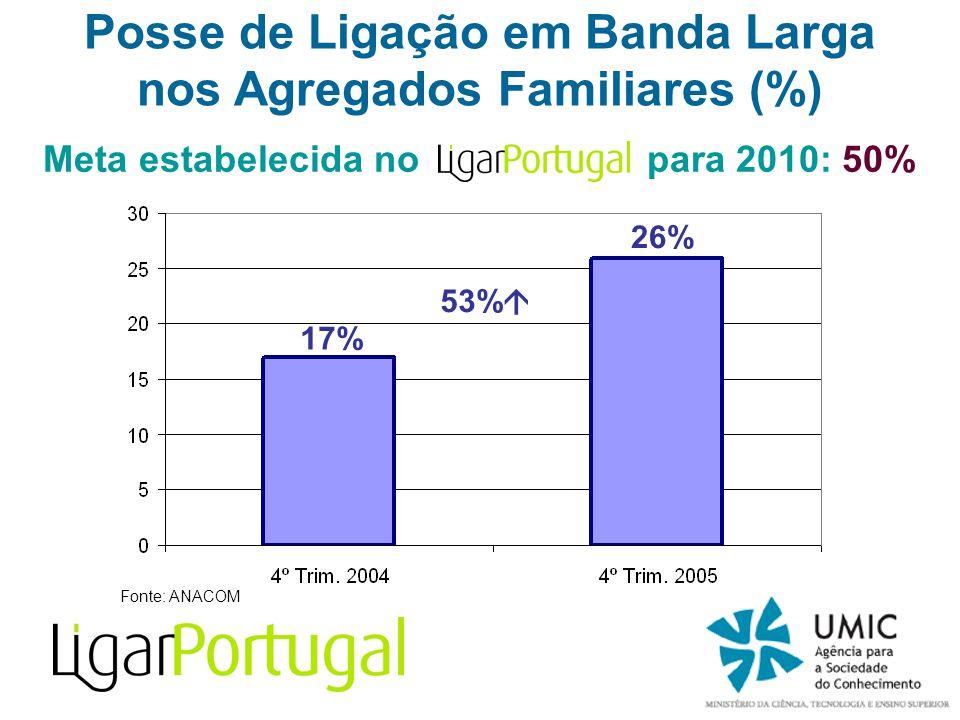 Fonte: ANACOM Posse de Ligação em Banda Larga nos Agregados Familiares (%) 53% Meta estabelecida no para 2010: 50% 17% 26%