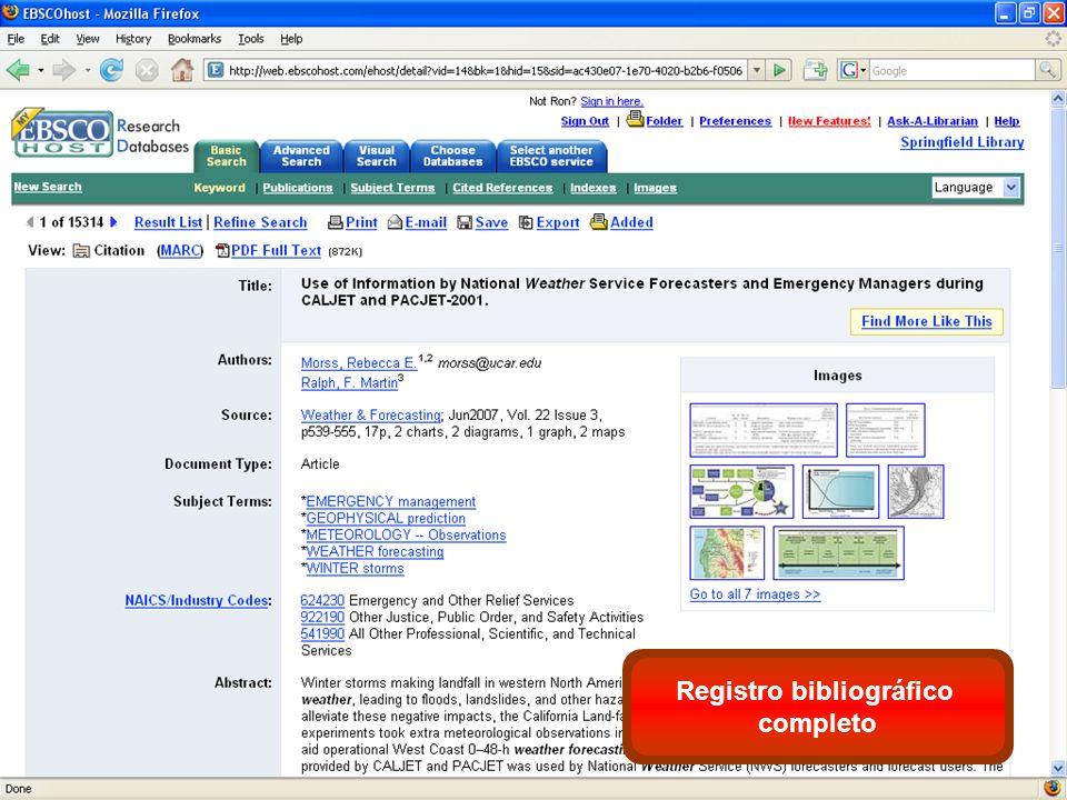 Registro bibliográfico completo