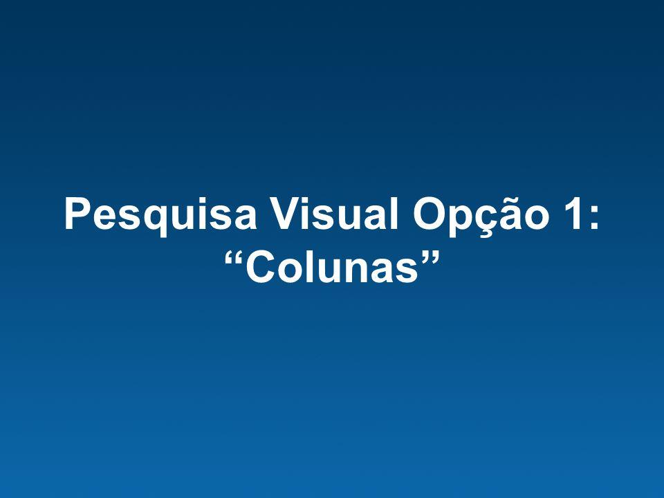 Pesquisa Visual Opção 1: Colunas