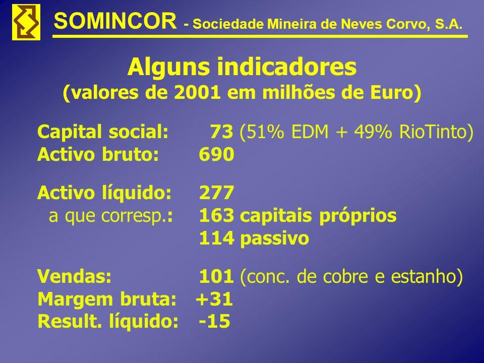 SOMINCOR - Sociedade Mineira de Neves Corvo, S.A. Alguns indicadores (valores de 2001 em milhões de Euro) Capital social: 73 (51% EDM + 49% RioTinto)