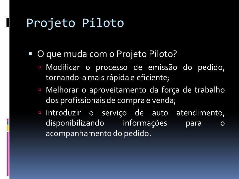 Projeto Piloto O que muda com o Projeto Piloto? Modificar o processo de emissão do pedido, tornando-a mais rápida e eficiente; Melhorar o aproveitamen