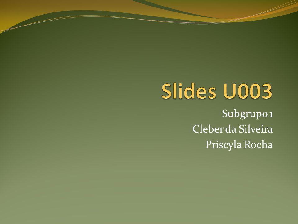 Subgrupo 1 Cleber da Silveira Priscyla Rocha