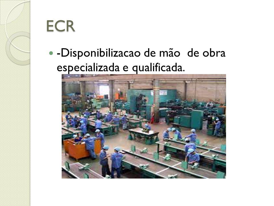 ECR -Padronização do veiculo de transporte.