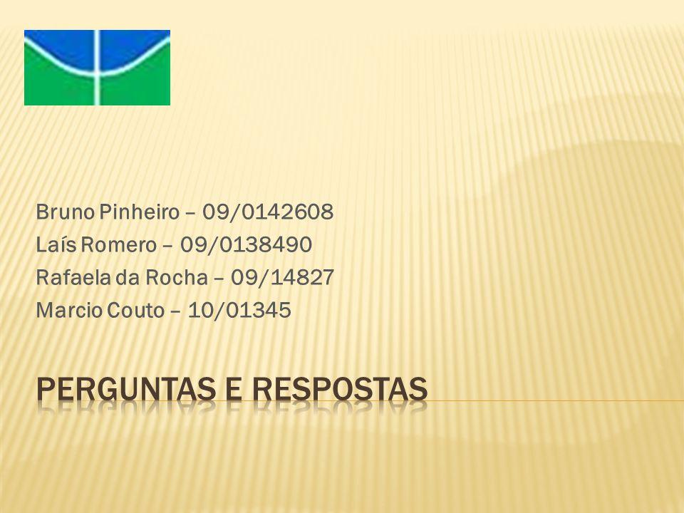 Bruno Pinheiro – 09/0142608 Laís Romero – 09/0138490 Rafaela da Rocha – 09/14827 Marcio Couto – 10/01345