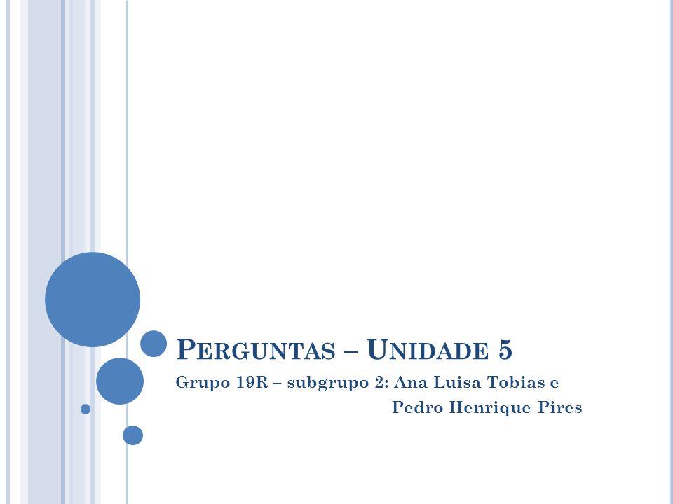 P ERGUNTAS – U NIDADE 5 Grupo 19R – subgrupo 2: Ana Luisa Tobias e Pedro Henrique Pires