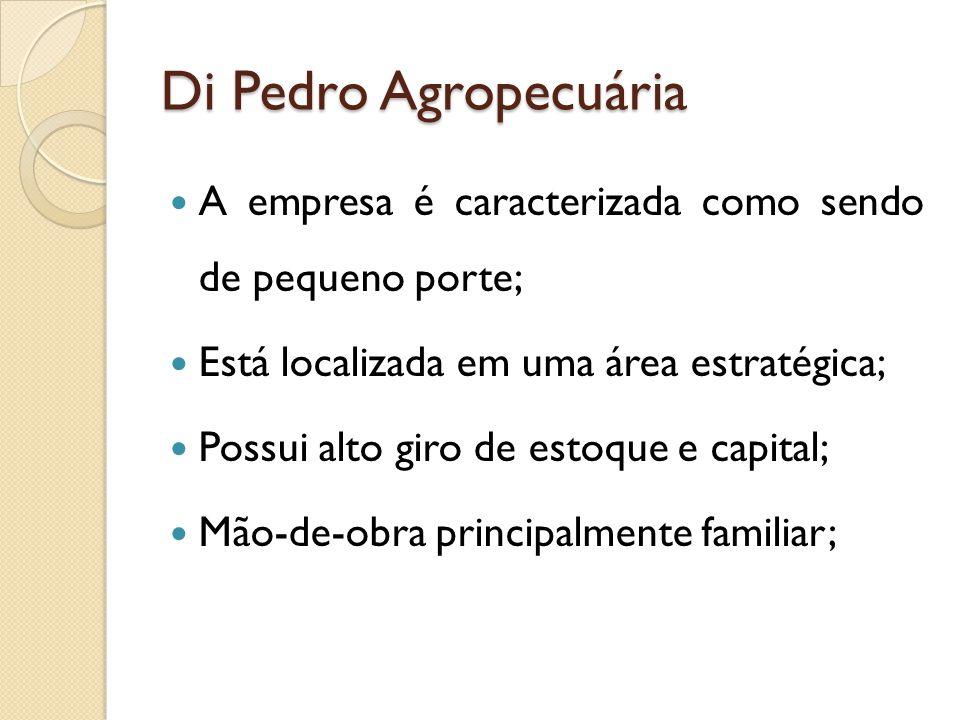 Di Pedro Agropecuária A empresa é caracterizada como sendo de pequeno porte; Está localizada em uma área estratégica; Possui alto giro de estoque e capital; Mão-de-obra principalmente familiar;