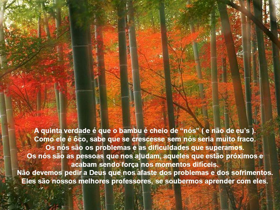 A quarta verdade que o bambu nos ensina é não criar galhos. Como tem a meta no alto e vive em moita, comunidade, o bambu não se permite criar galhos.