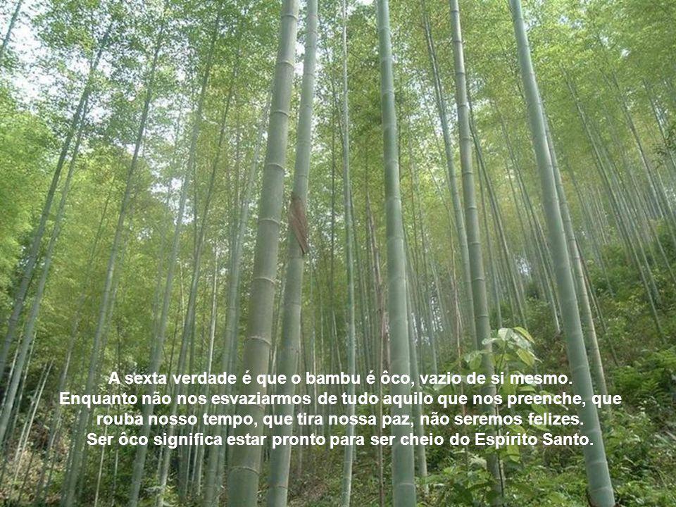 A quinta verdade é que o bambu é cheio de nós ( e não de eus ). Como ele é ôco, sabe que se crescesse sem nós seria muito fraco. Os nós são os problem