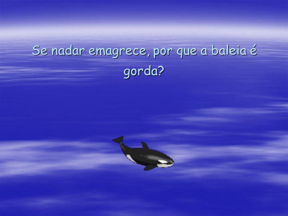 Se nadar emagrece, por que a baleia é gorda?