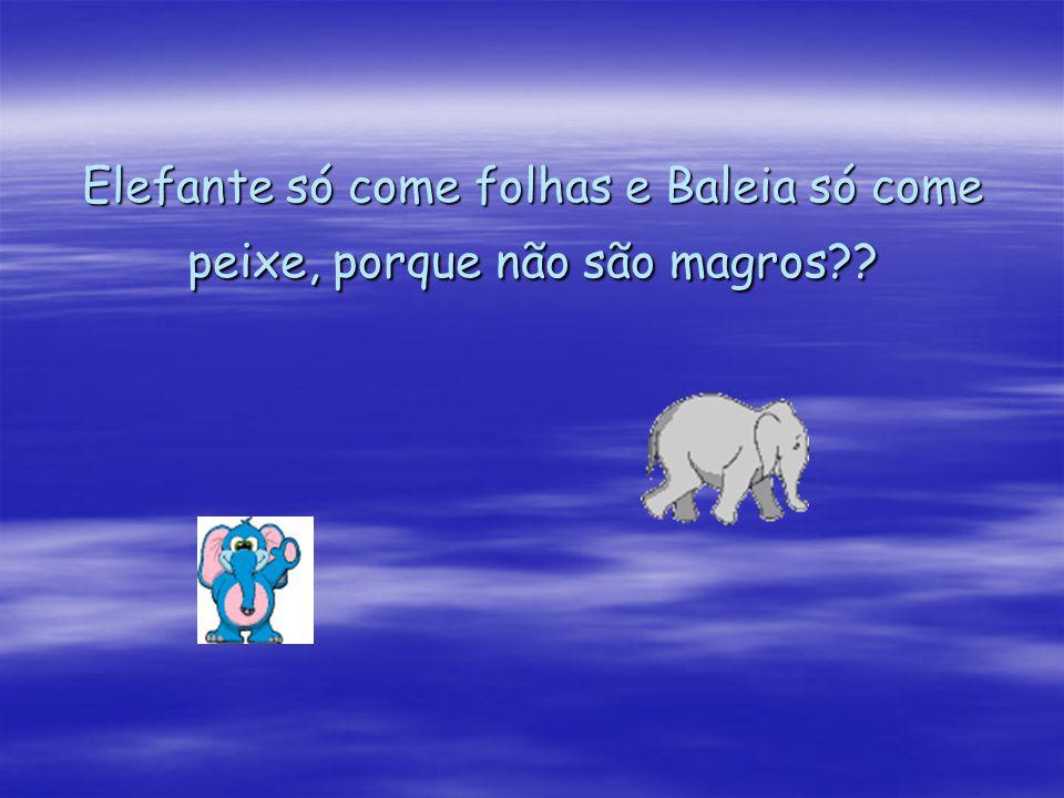 Elefante só come folhas e Baleia só come peixe, porque não são magros??