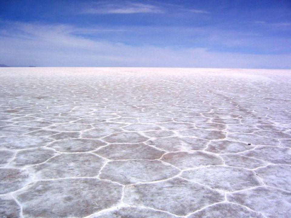 Além disso, este deserto constitui uma das maiores reservas de lítio e conta com importantes quantidades de potássio, boro e magnésio. Mais de 40 empr