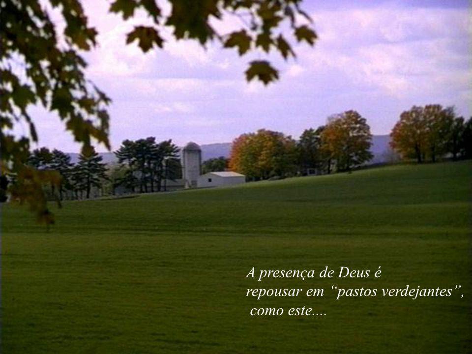A presença de Deus é repousar em pastos verdejantes, como este....