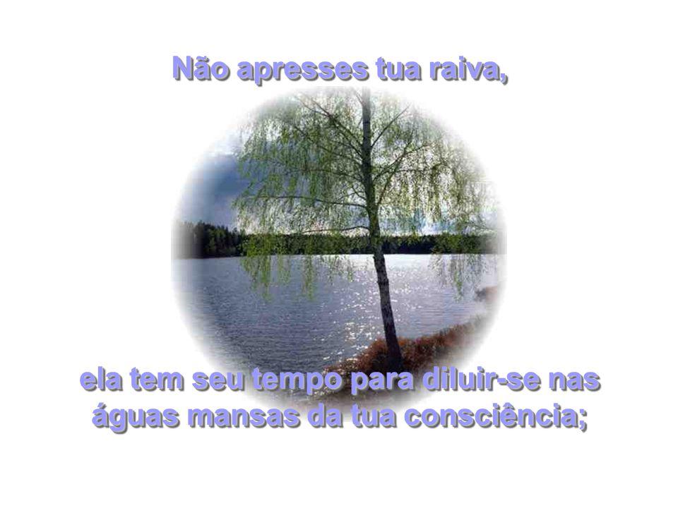 ela tem seu tempo para diluir-se nas águas mansas da tua consciência; Não apresses tua raiva,