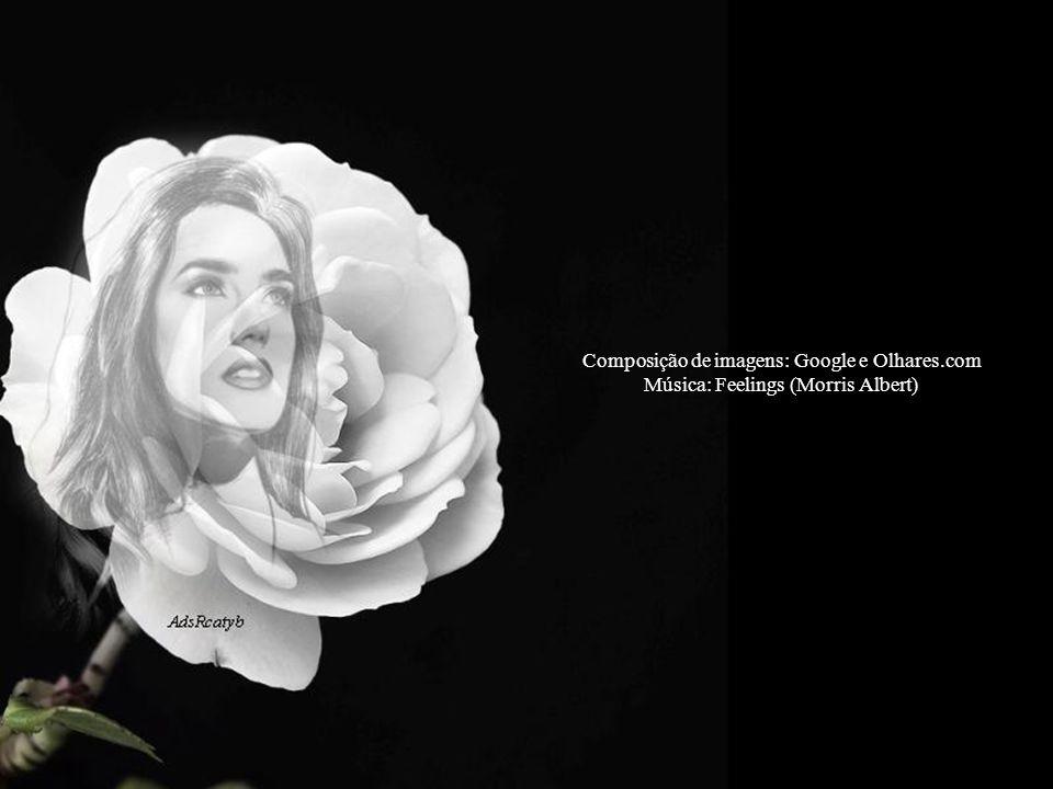 Composição de imagens: Google e Olhares.com Música: Feelings (Morris Albert)