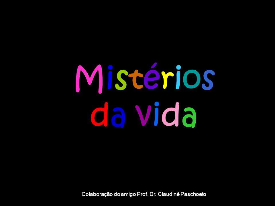 Mistériosda vidaMistériosda vida Colaboração do amigo Prof. Dr. Claudinê Paschoeto