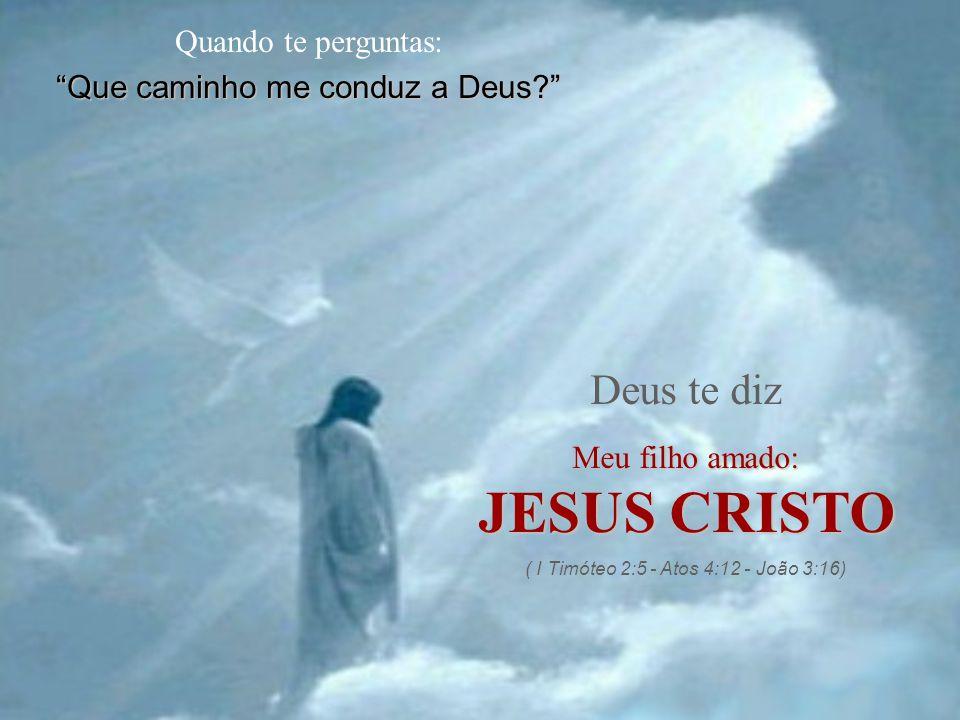 Quando te perguntas: Que caminho me conduz a Deus? Deus te diz Meu filho amado: JESUS CRISTO ( I Timóteo 2:5 - Atos 4:12 - João 3:16)
