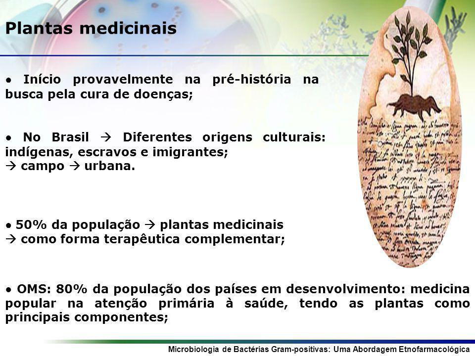 Microbiologia de Bactérias Gram-positivas: Uma Abordagem Etnofarmacológica O exemplo da Jurema-preta Mimosa tenuiflora (Willd.) Poir.
