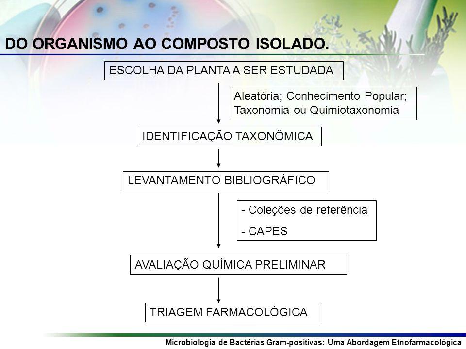 Microbiologia de Bactérias Gram-positivas: Uma Abordagem Etnofarmacológica DO ORGANISMO AO COMPOSTO ISOLADO.