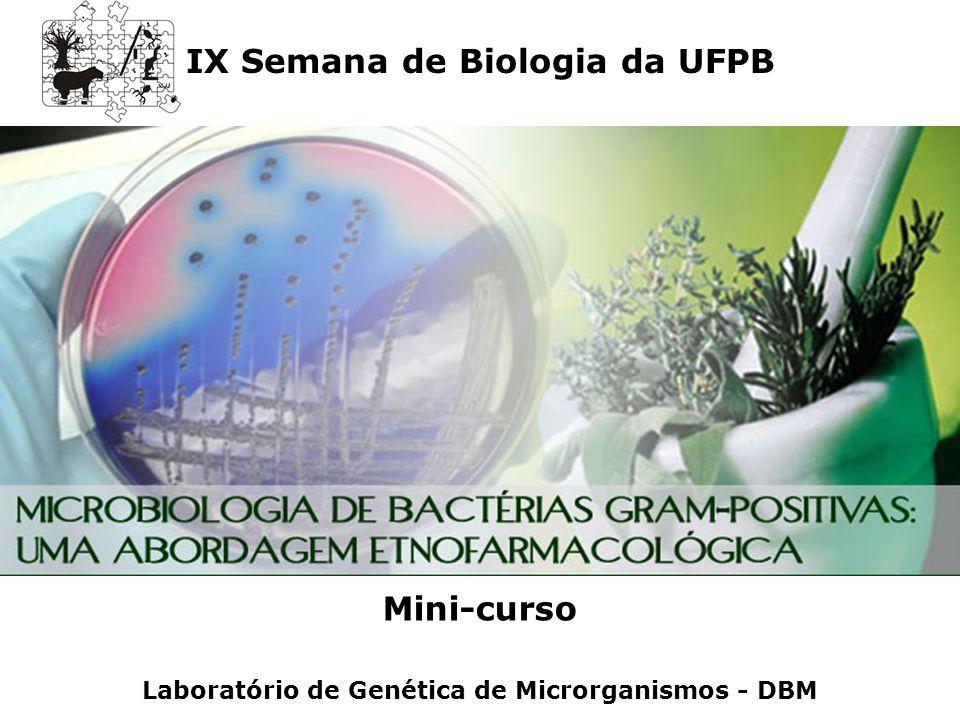 IX Semana de Biologia da UFPB Mini-curso Laboratório de Genética de Microrganismos - DBM