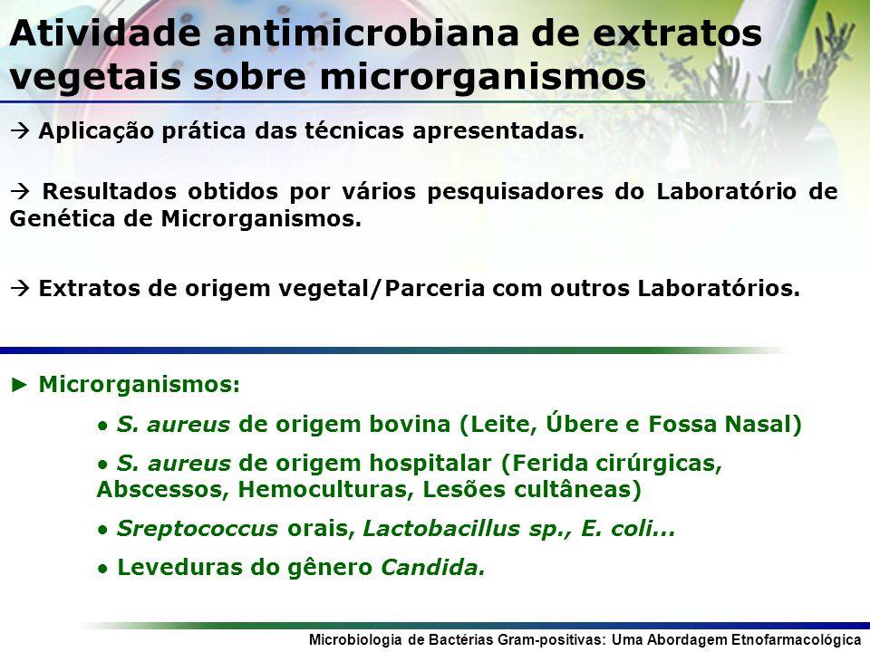 Microbiologia de Bactérias Gram-positivas: Uma Abordagem Etnofarmacológica Referências: Pollianna Muniz Alves.