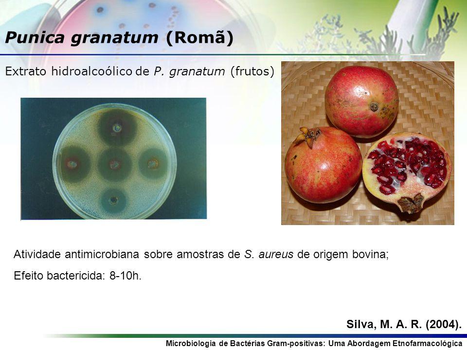 Microbiologia de Bactérias Gram-positivas: Uma Abordagem Etnofarmacológica Rosmarinus oficcinales (Alecrim) Extrato hidroalcoólico de R.