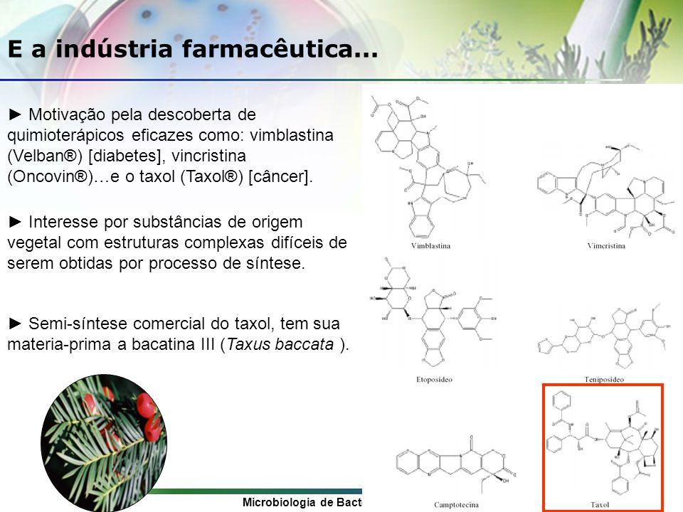 Microbiologia de Bactérias Gram-positivas: Uma Abordagem Etnofarmacológica E a indústria farmacêutica...