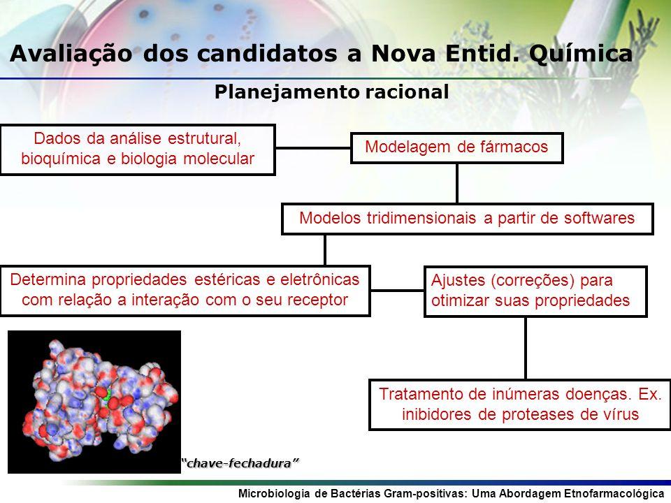 Microbiologia de Bactérias Gram-positivas: Uma Abordagem Etnofarmacológica Planejamento racional Avaliação dos candidatos a Nova Entid.