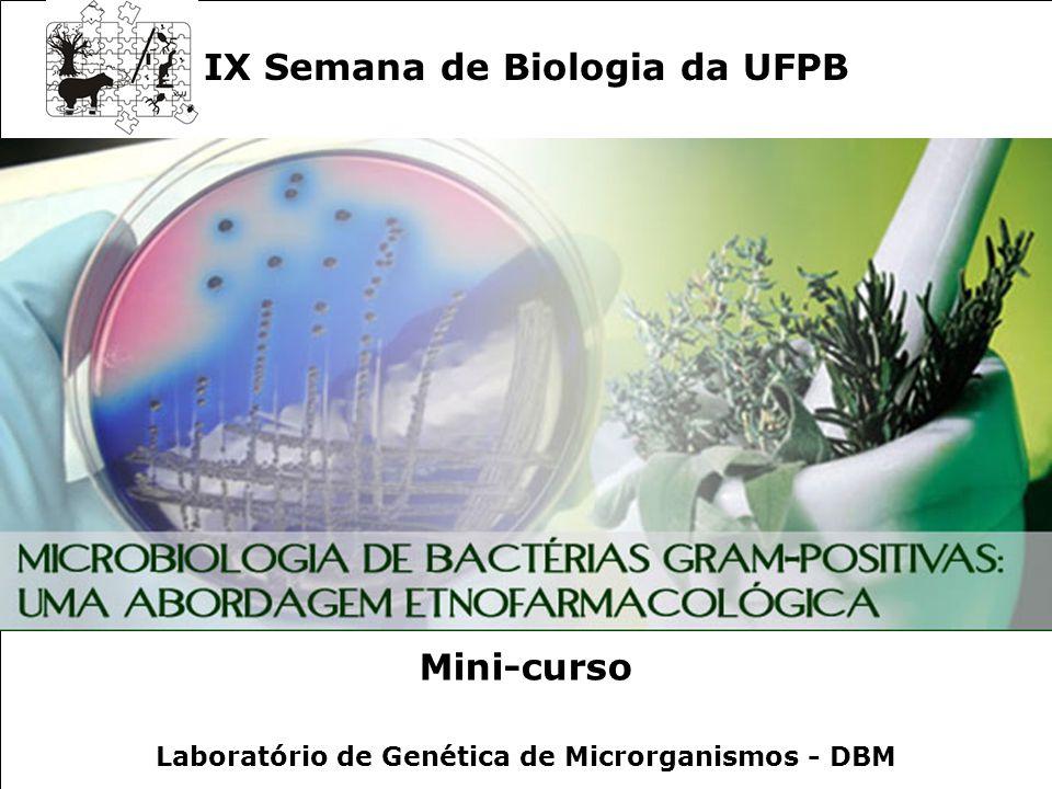 Microbiologia de Bactérias Gram-positivas: Uma Abordagem Etnofarmacológica IX Semana de Biologia da UFPB Mini-curso Laboratório de Genética de Microrg
