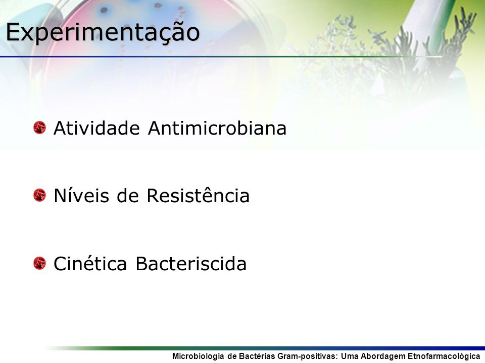 Microbiologia de Bactérias Gram-positivas: Uma Abordagem Etnofarmacológica Atividade Antimicrobiana in vitro Ágar Estoque BHI Estufa (37ºC) 24h NaCl Diluição BHI Remoção do excesso e secagem na Estufa (37ºC) por 20 mim Inundação